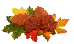 Autumn Leaves Guest Soaps