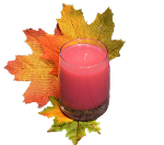 Spiced Cranberry Tumbler Candle
